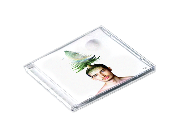 vilk cd breuch album physique disque